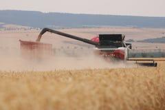 Rostselmash combine threshing wheat in Germany stock photos