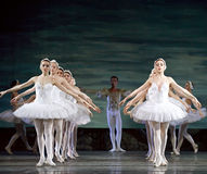 Russian royal ballet perfome swan ballet Stock Photos