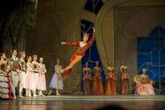 Russian royal ballet perfome Swan Lake Royalty Free Stock Photos