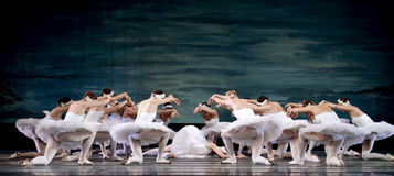 Russian royal ballet perfome Swan Lake Stock Images