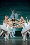 Russian royal ballet perfome Swan Lake Stock Photo