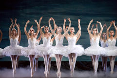 Russian royal ballet perfome Swan Lake Lake Stock Images