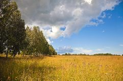 Russian rural landscape Stock Image