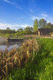 Russian rural landscape with a lake and reeds. Old Russian village on the shores of lake stock photography