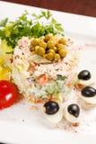 Russian salad Stock Photography
