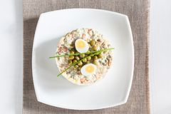 Russian Salad Olivier Royalty Free Stock Photography