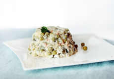 Russian salad on a plate Royalty Free Stock Images