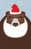 Russian Santa Claus-bear. Wild animal with beard and moustache. Traditional new years beast Stock Photography