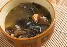 Russian sauerkraut soup with mushrooms Royalty Free Stock Images