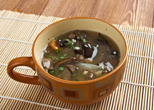 Russian sauerkraut soup with mushrooms Royalty Free Stock Photo