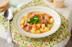 Russian Sauerkraut Soup, Shchi (Stchi) Stock Photos