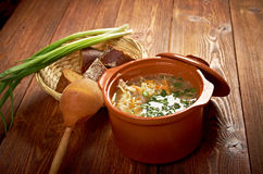 Russian sauerkraut soup stchi Royalty Free Stock Photo