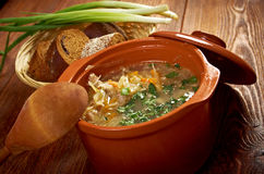 Russian sauerkraut soup stchi. White Cabbage in the casserole Royalty Free Stock Photo