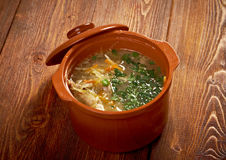 Russian sauerkraut soup stchi Stock Photo