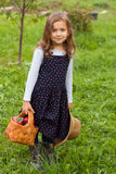 Russian Six Year Old Girl Hold Basket With Apple And Wicker Hat Royalty Free Stock Photo