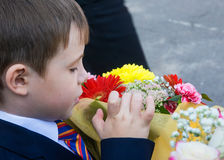 Russian small boy first-grader Stock Photos