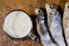 Russian snack . Beer and dried fish. Royalty Free Stock Image