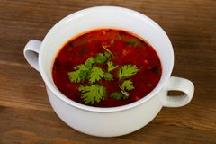 Russian solyanka soup. With meat royalty free stock images