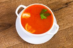 Russian Solyanka soup. With parsley Royalty Free Stock Photography