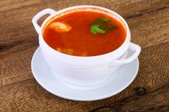 Russian Solyanka soup. With parsley Royalty Free Stock Image