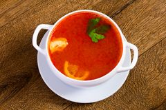 Russian Solyanka soup. With parsley stock photo