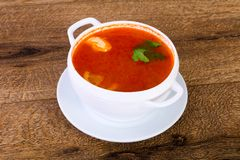 Russian Solyanka soup. With parsley royalty free stock photos