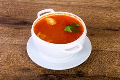 Russian Solyanka soup. With parsley stock photography