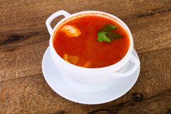 Russian Solyanka soup. With parsley royalty free stock photo