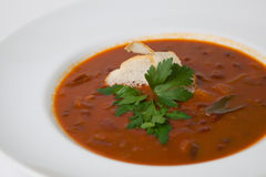 Russian soup plate Royalty Free Stock Photo