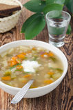 Russian soup rassolnik with sour cream and a shot of vodka, vert Stock Photos