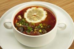 Russian soup, Solyanka. Traditional russian and ikrainian cuisine Stock Image