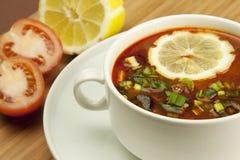 Russian soup, Solyanka. Traditional russian and ukrainian cuisine Stock Photos