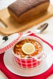 Russian soup - solyanka. Royalty Free Stock Images