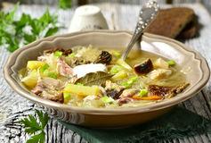 Russian Sour Cabbage Soup (shchi). Stock Photo