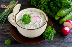 Russian spring and summer cold soup  with kefir Stock Photo