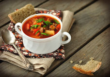 Russian Style Soup - Rassolnik Stock Photography