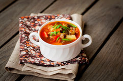 Russian Style Soup Rassolnik Stock Photography