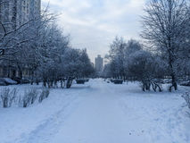 Russian suburb. View of a Russian suburb in winter in St. Petersburg Stock Photos
