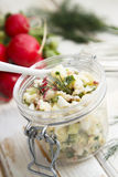 Russian summer salad Stock Photography