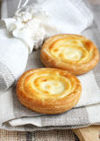 Russian sweet cheese danish Stock Images