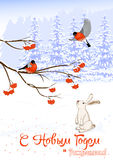 Russian text Christmas and New Year. Greeting Card with Bullfinch Birds on a Rowan Tree Branch and White Hare collect Royalty Free Stock Image