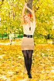 Russian top model in autumn park Stock Photography