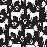 Russian Toy Terrier, seamless pattern with dogs. Royalty Free Stock Photo