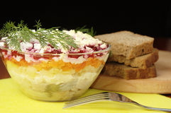 Russian Traditional Herring Salad Royalty Free Stock Photo