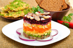 Russian traditional herring salad with beetroot, carrot, eggs on Royalty Free Stock Images