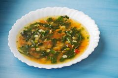 Green soup with sorrel and nettle in a white plate. Russian traditional nettle soup. Russian traditional nettle soup. Green soup with sorrel and nettle stock images