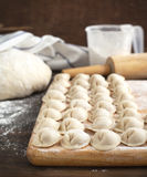 Russian traditional pelmeni with meat. Royalty Free Stock Photos