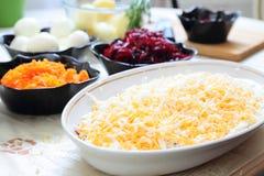 Russian traditional salad 'herring under fur coat Stock Image