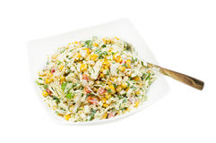 Russian traditional salad olivie Stock Image