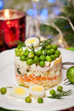 Russian traditional salad Olivier Royalty Free Stock Photos
